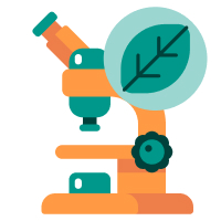 Free Biology Essay Examples & Topics